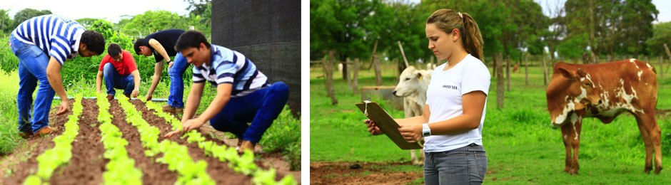 Fazenda Escola