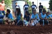 Projeto Horta Escola é uma das extensões que vai participar da ação