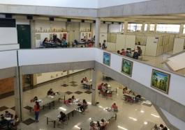 Biblioteca 13